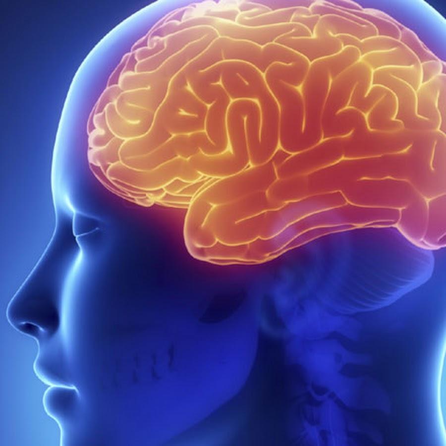 Гипертоническая энцефалопатия головного мозга: симптомы ...